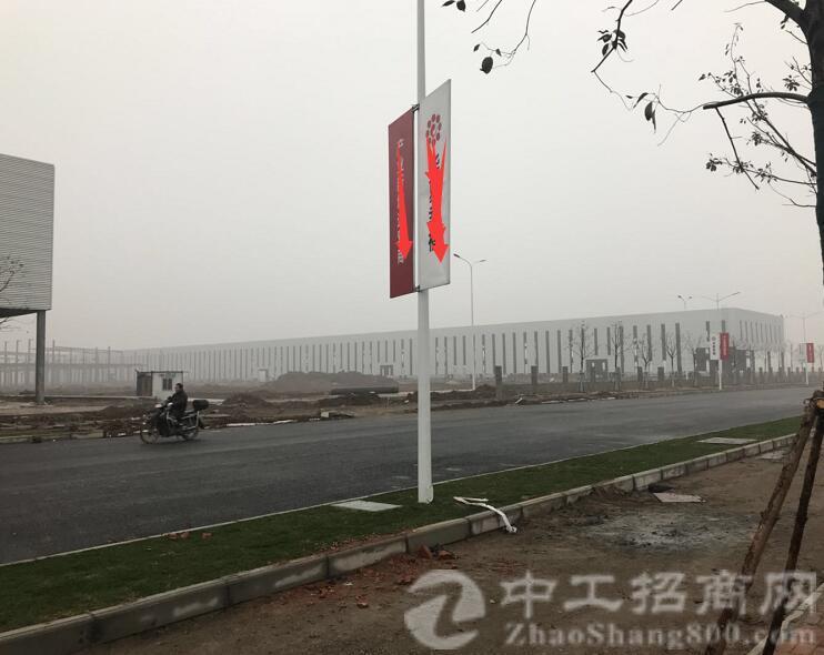 武汉100亩国有指标用地分块出售