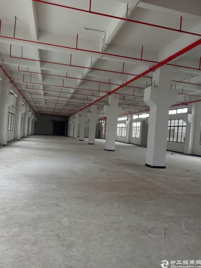 工业区分租一二楼