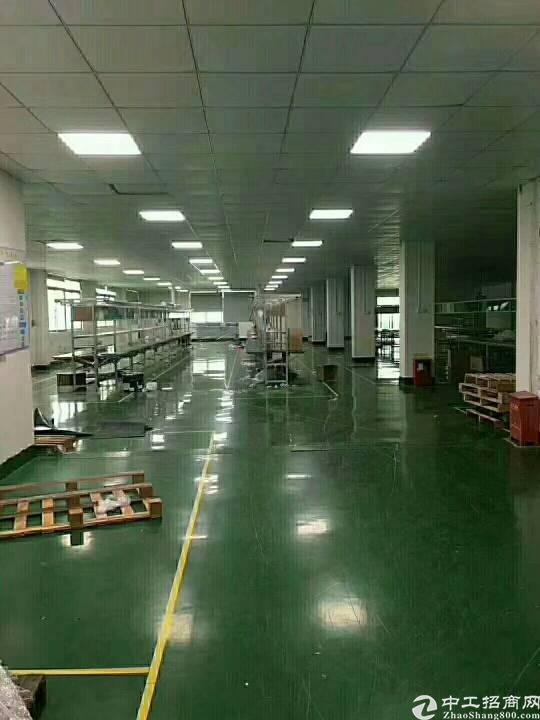 石岩南光高速出口新出独院6500平方厂房招租