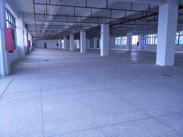 坪山高速出口七万平工业园整体招租可分租