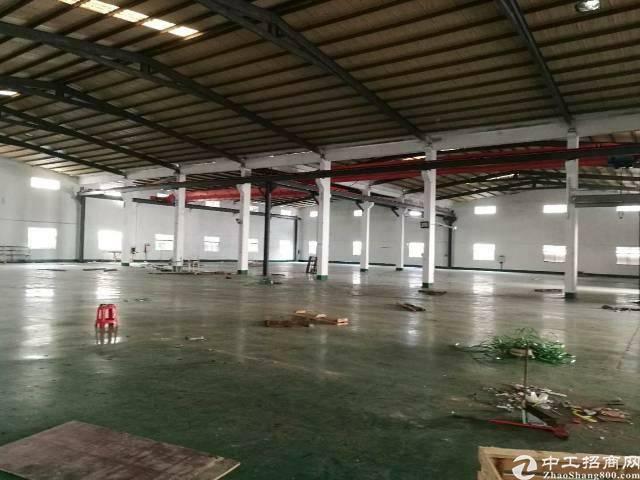 平湖主干道旁单一层8米厂房3500平方
