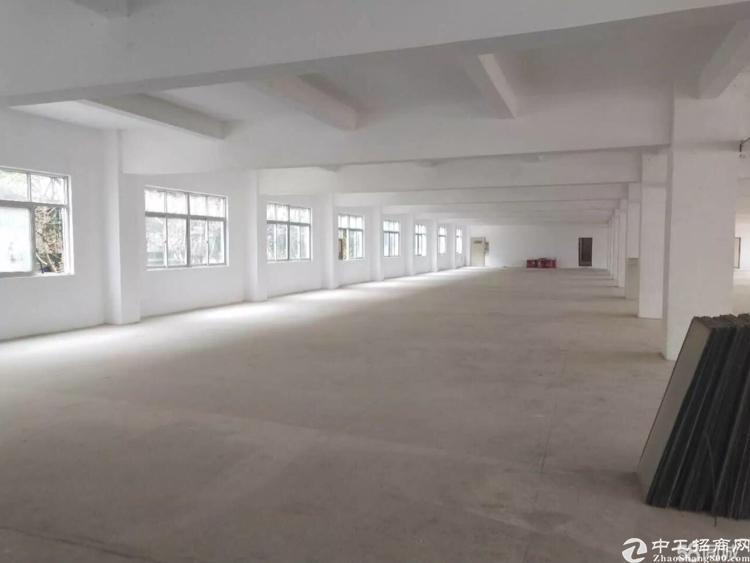 横岗大康上中村700平方,带装修,厂房出租一整层。-图2