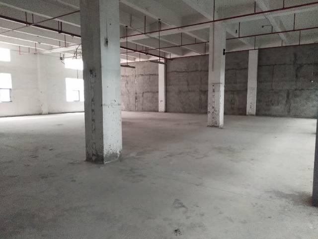 沙三工业区新出一楼一整层1850平方7米高村委厂房出租-图4
