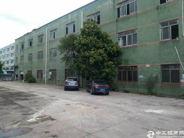 松岗高速出口附近花园式独门独院分租1500平