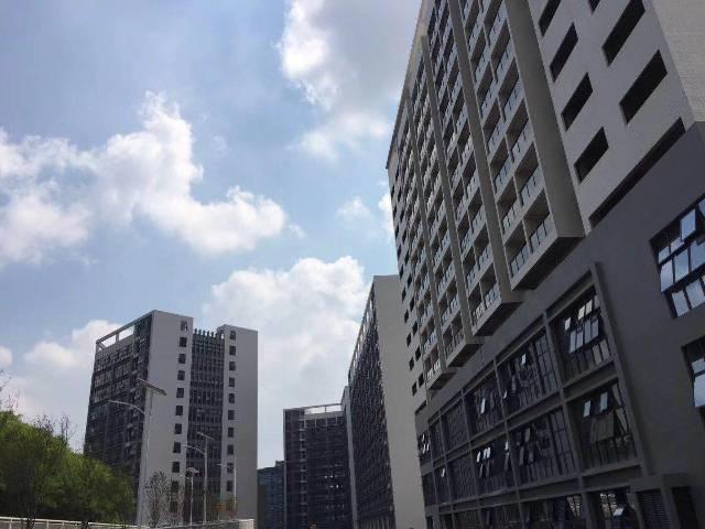 龙岗坪地150000平红本厂房,有喷淋,享高新补贴,可分租