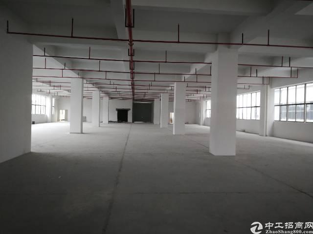 桥头镇工业园区分租楼上2100平米12元