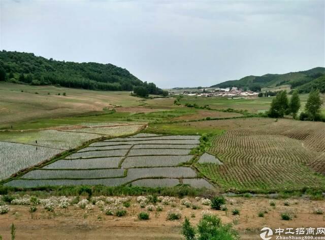 博罗100亩国有土地出售