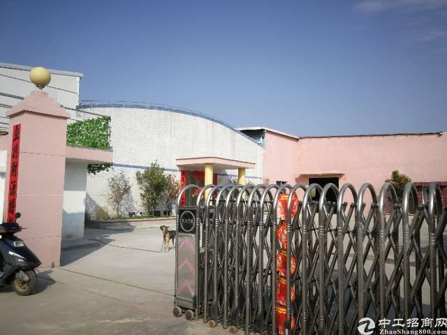 龙溪新出独院单一层厂房4300平方
