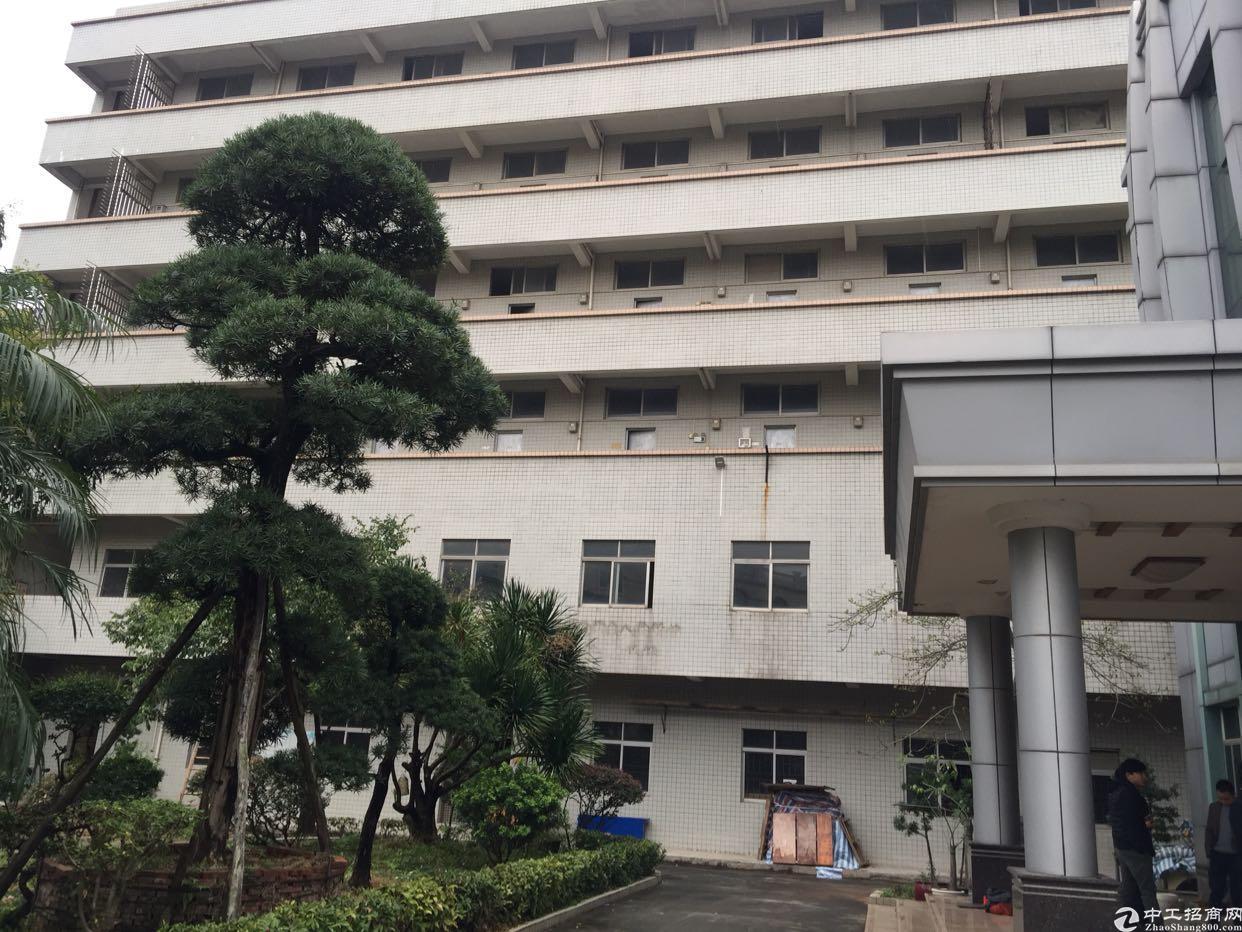 东莞大朗14700平花园式独院厂房招租