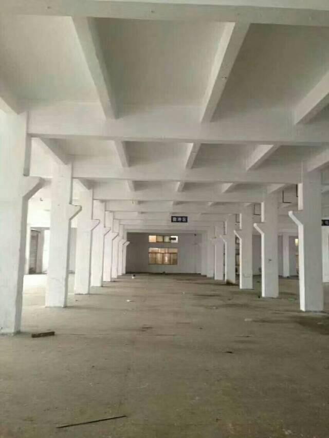 公明镇南光高速出口一楼六米高1500平米厂房出租-图3