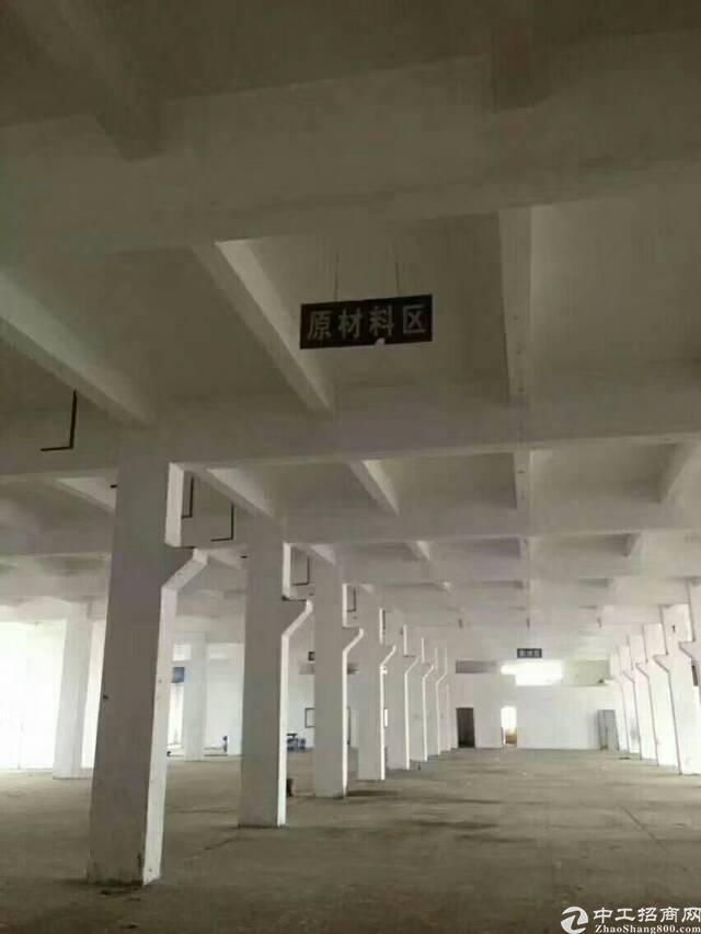 公明镇南光高速出口一楼六米高1500平米厂房出租-图2