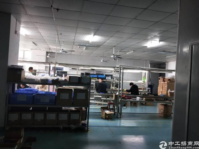 沙井芙蓉工业区一整层2700平方带装修出租-图4