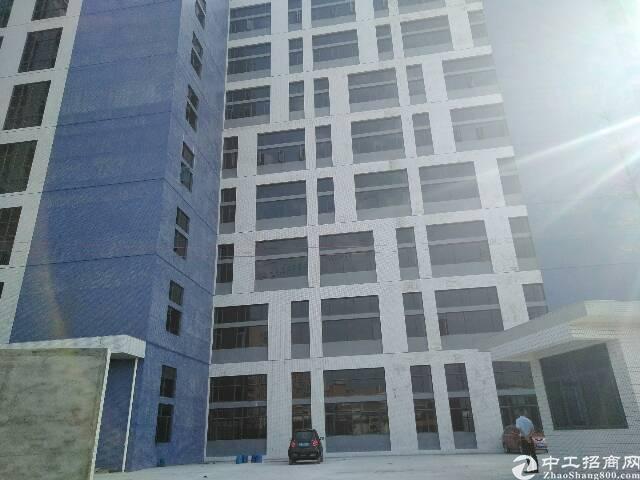 东莞长安厦岗空出标准独院厂房1-8层24000㎡招租