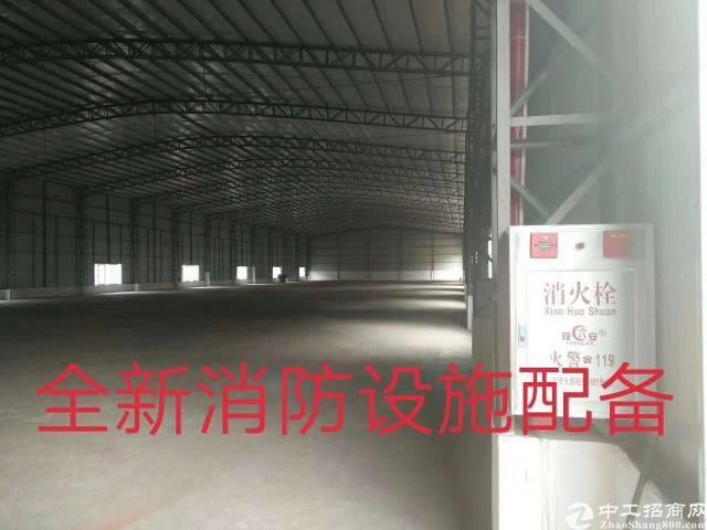 万江石美工业园内新建钢构厂房出租