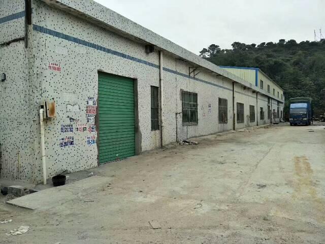 坑梓老坑滴水8米高钢构厂房2000平13元租