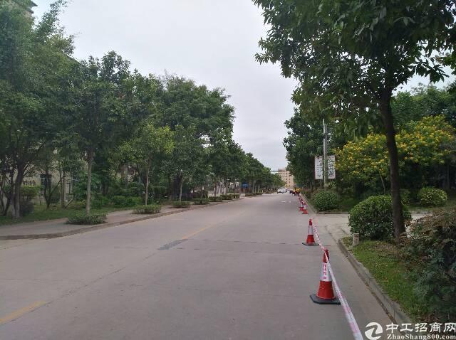 沈海高速出口秀新出红本独栋厂房2400平方送宿舍