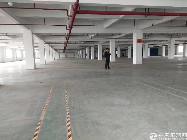 惠阳秋长西湖主干道边靠深圳新出独院6900平米标准厂房出租