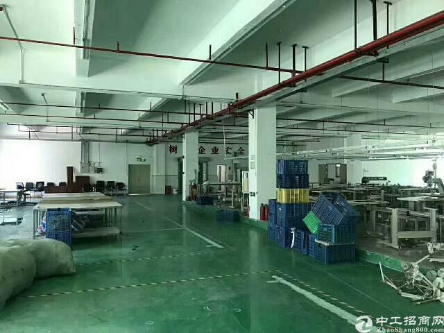 华南城附近3楼500平方标准厂房