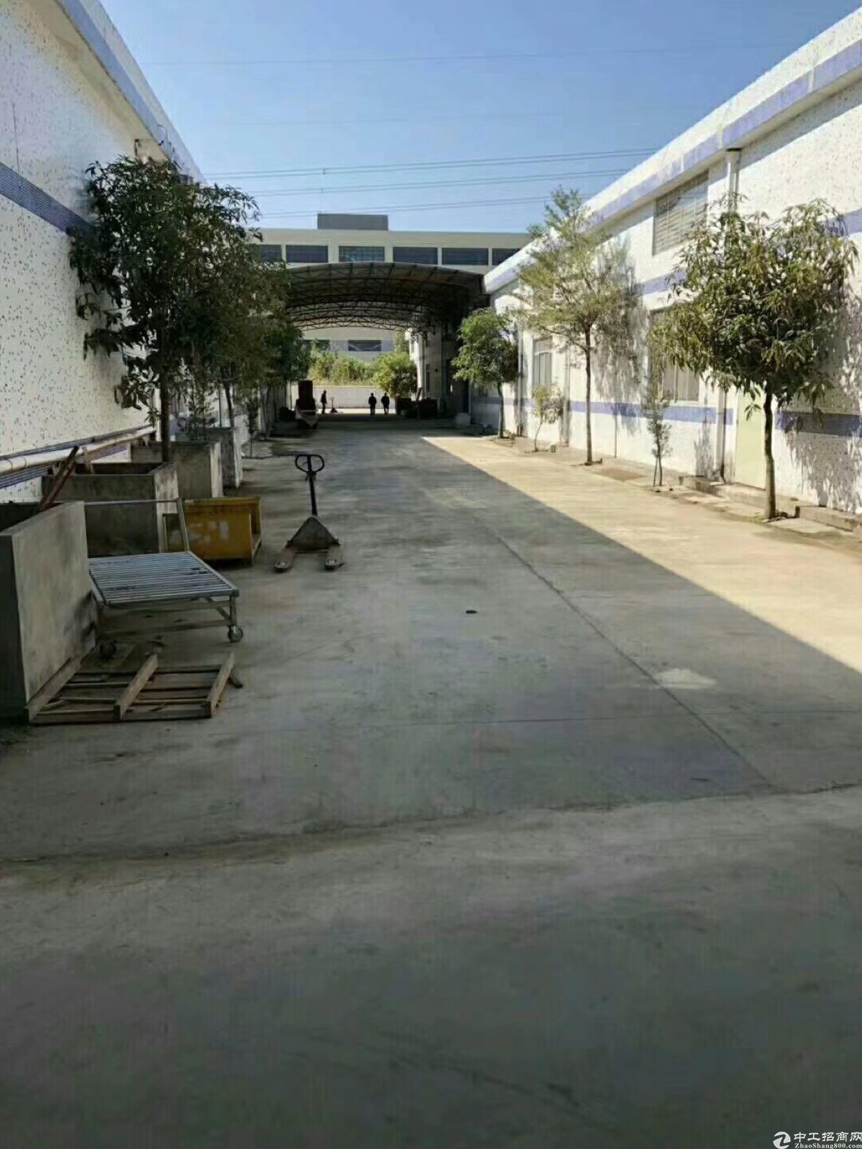 惠阳沙田单一层高八米出租