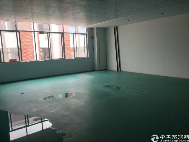 新塘全新厂房3楼 1900平方出租-图7