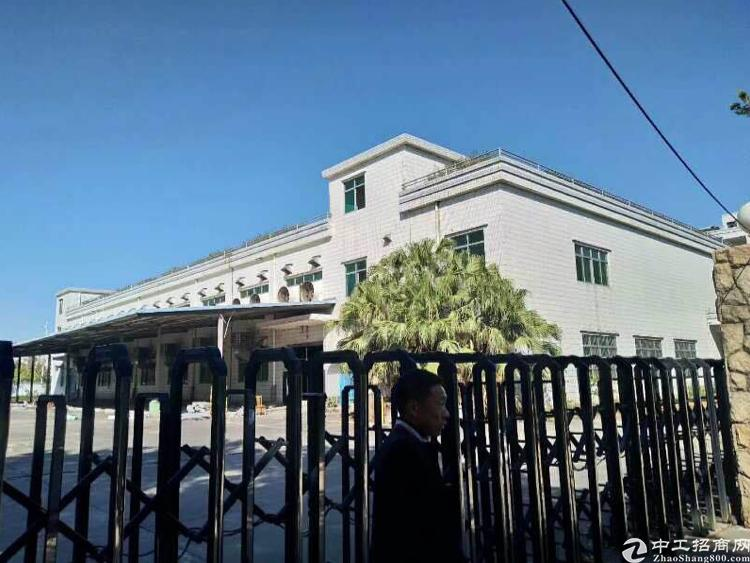 茶山新出独院厂房三层8000平方出租