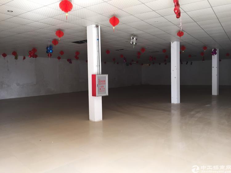 龙溪镇龙桥大道边独立单一层700方铁皮出租