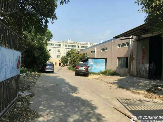 黄江靠深圳滴水6米砖墙到顶3600平钢构独院出租