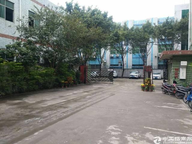 松岗高速出口附近花园式独门独院分租1500平-图2