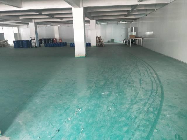 新塘全新厂房3楼 1900平方出租-图4