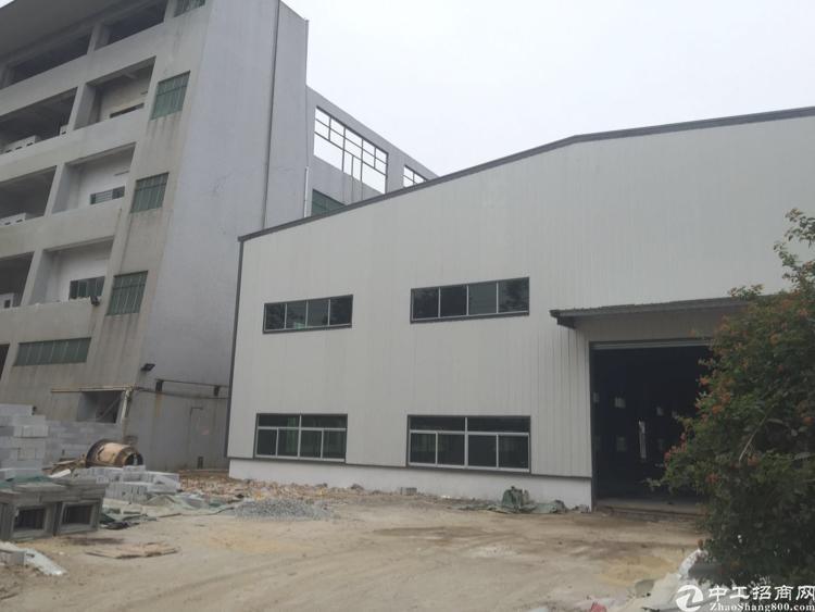 道滘全新独院单一层厂房招租 滴水8米配电1000kva