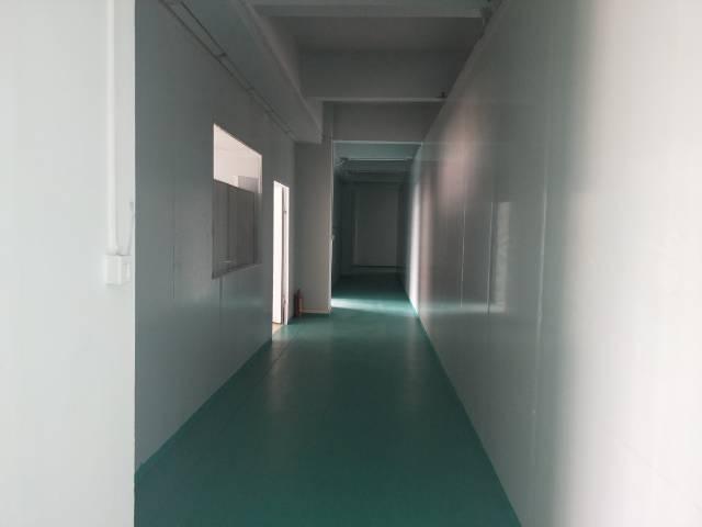 新塘全新厂房3楼 1900平方出租-图6