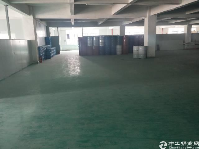 新塘全新厂房3楼 1900平方出租-图3