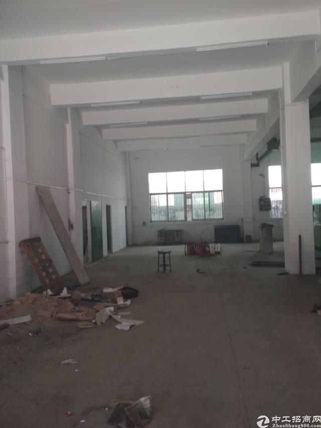 凤岗五联新空出标准一楼800㎡现成行车隔楼办公室