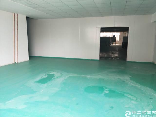 新塘全新厂房3楼 1900平方出租-图2