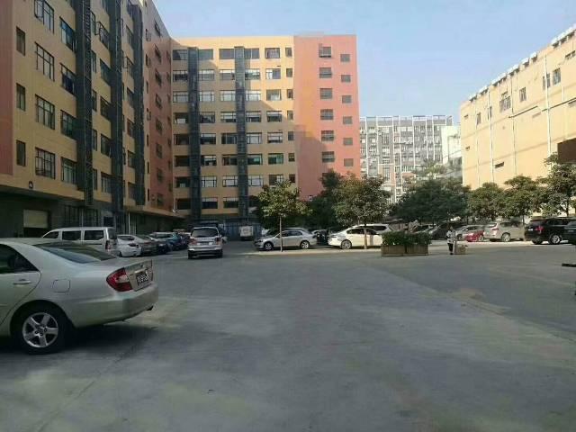 沙井镇黄埔107国道旁边新出楼上2000平方出租