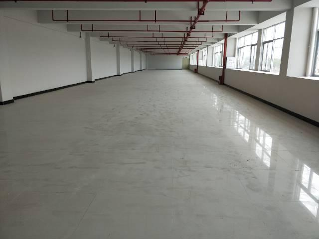 新塘全新物流高台仓  大小可分租-图9