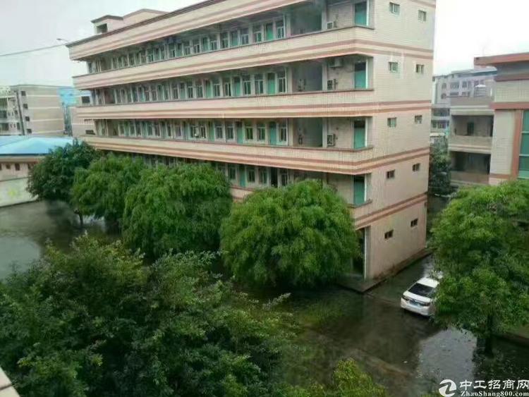 东莞厚街镇13000平米国有证厂房优惠出售
