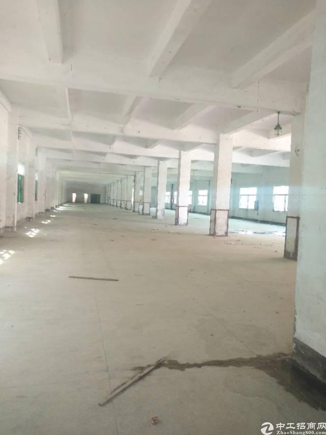 横岗大康沙河路边大型工业园区新出一楼厂房招租