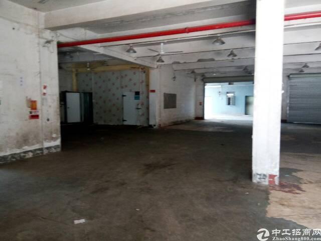 平湖白泥坑现有一楼带冷库卸货平台厂房对外低价出租