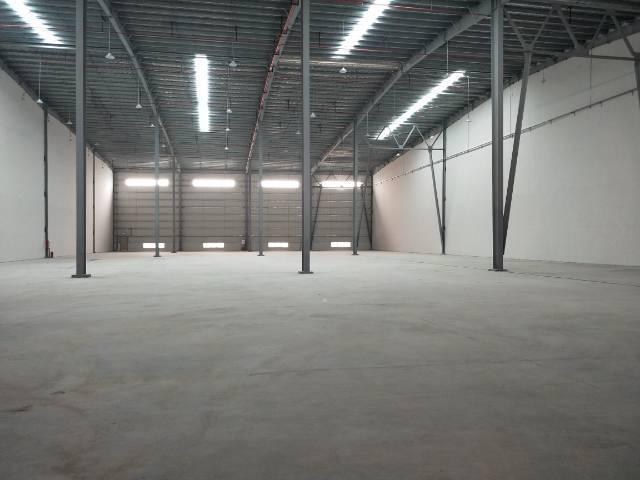 新塘全新物流高台仓  大小可分租-图5