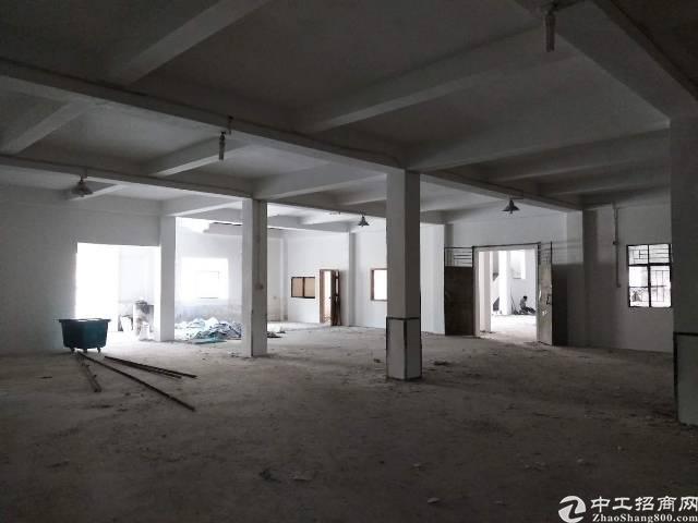 惠州大亚湾新出标准厂房680平米,原房东分租-图2