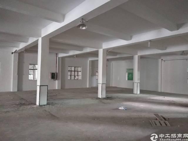 惠州大亚湾新出标准厂房680平米,原房东分租-图4