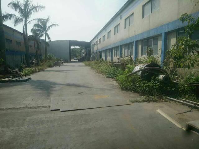 惠州惠阳区高速路口3公里新出独院房东钢构小独院1980平方出