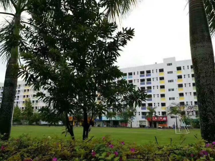东莞市大湾区占地43亩建筑26000平米国有证厂房出售
