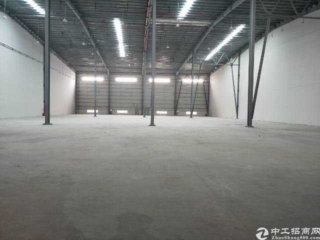 新塘全新物流高台仓  大小可分租-图6