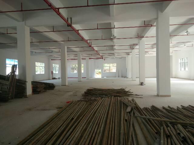 惠阳秋长白石全新标准一楼1200平米招租