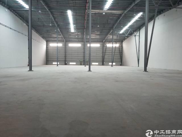 新塘全新物流高台仓  大小可分租-图7
