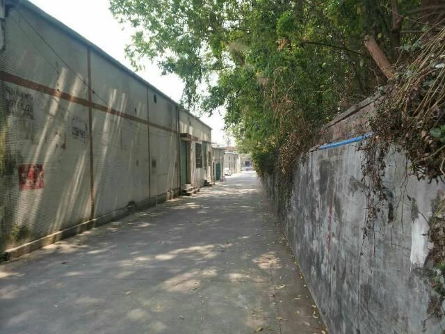常平镇新出原房东500平方米的单层独门独院
