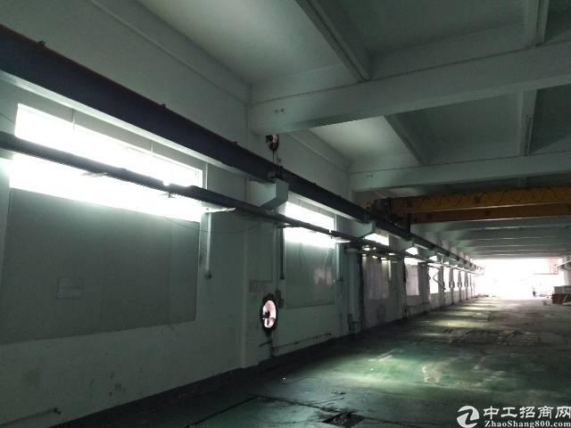 公明南光高速出口处新出独门独院厂房56448平方厂房,-图6