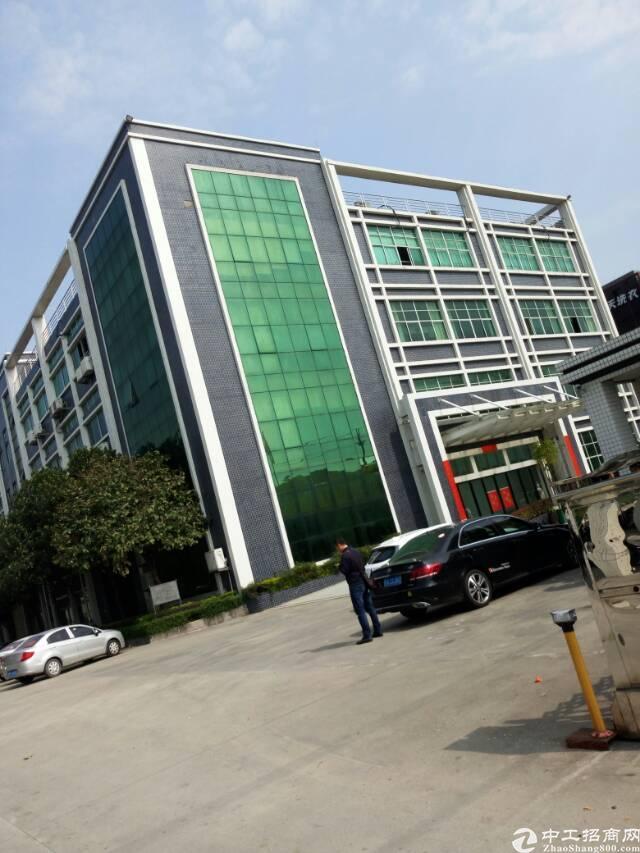 广州市新塘镇荔新公路边上出租厂房17000平方